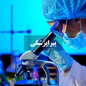 پیراپزشکی